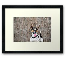 Happy as Larry Framed Print