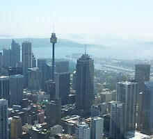 SYDNEY CITY AUSTRALIA by springs