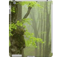 Strong Fog in the Beech Forest. iPad Case/Skin