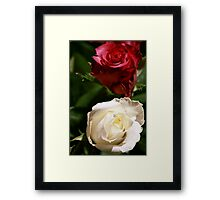 To All Mothers Framed Print
