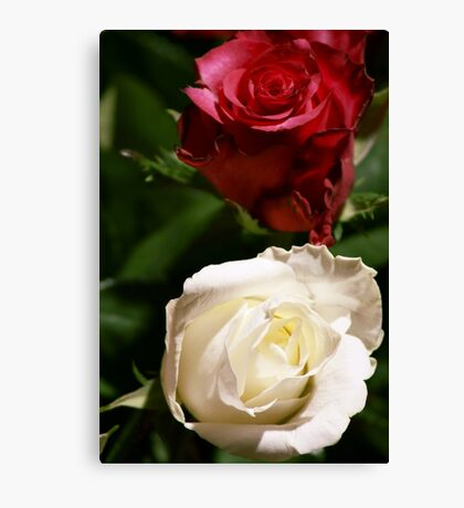 To All Mothers Canvas Print