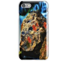Willow River Falls 5 iPhone Case/Skin
