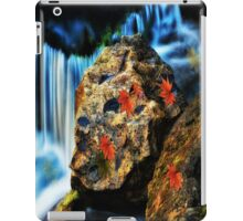 Willow River Falls 5 iPad Case/Skin