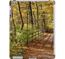 At Fall In Wienerwald iPad Case/Skin