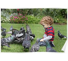 Eli and the Pigeons Poster