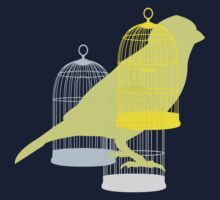 Bird and cages by sledgehammer