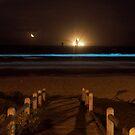 Bioluminescence by Roxanne du Preez