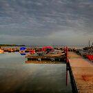 Balsam Bay by Larry Trupp