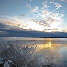 Sunset on Lake Erie by Heather Paakkonen