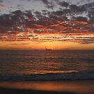 Orange Horizon by Roxanne du Preez