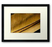 From the Golden Goose Framed Print