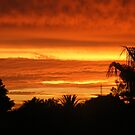 Golden Sunset by Roxanne du Preez