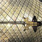 Summer night in Paris by Alinka