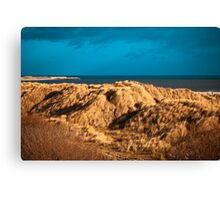 Dune grasses and pier Canvas Print