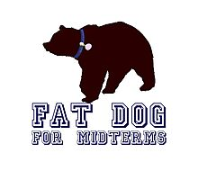 Fat Dog For Midterms Photographic Print