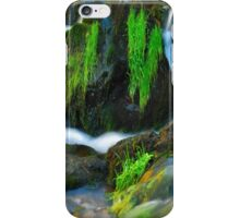 Willow River Falls 6 iPhone Case/Skin
