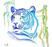 White Tiger Ink Drawing Photographic Print