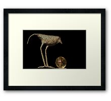The Looking Glass (VIEW LARGE) Framed Print