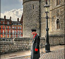 """ Chelsea Pensioner "" by Mama-C"