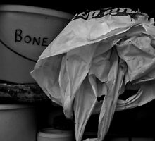 Bucket o' Bones by C-Ruby