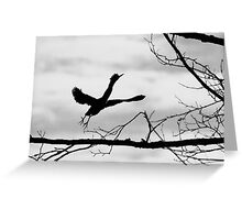 Green Heron Silhouette  Greeting Card