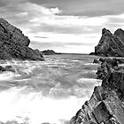 Bow Fiddle Rock by scottalexander