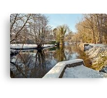 Snow on the river-bank Canvas Print
