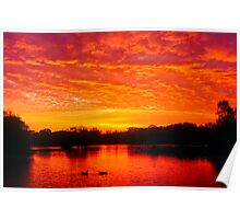 Brilliant sunset Poster