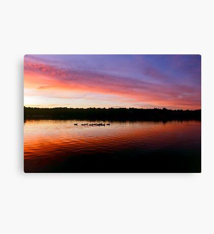 Geese silhouettes at dusk Canvas Print