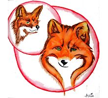Fox Lovers Pen and Ink Drawing Photographic Print
