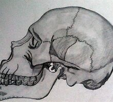 Penciled Skull by lindsshinn