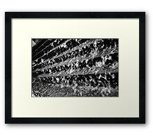 Tranquil Angles Framed Print