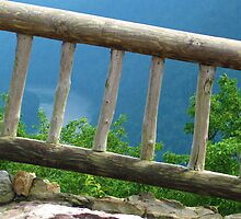 Cooper's Rock Fence - West Virginia by Griff013