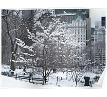 Central Park in Snow, Plaza Hotel Poster