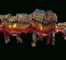 Sun Loong Imperial Dragon - Bendigo Australia by Bev Pascoe