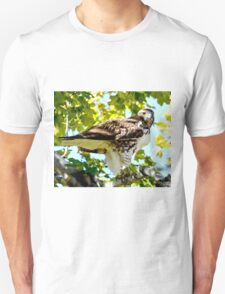 Colorado Red Tailed Hawk T-Shirt