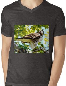 Colorado Red Tailed Hawk Mens V-Neck T-Shirt
