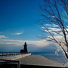 Frozen Pier by Heather Paakkonen