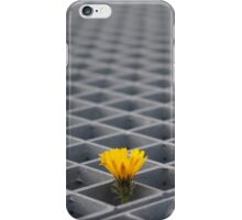 Lonely yellow flower among metal grid iPhone Case/Skin