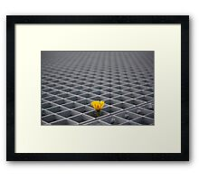 Lonely yellow flower among metal grid Framed Print