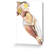 "Anatomical Nude Modelled on ""In Utero"" Album Greeting Card"