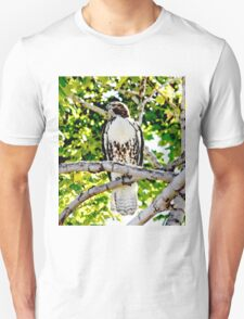 Red Tailed Hawk T-Shirt