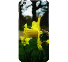 tears of nature iPhone Case/Skin