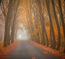 Our Autumn by Ildiko Neer