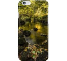 West Beck, Goathland, North Yorkshire iPhone Case/Skin