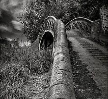 Bridge by derekcooper
