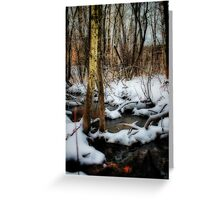 Winter Trees And Creek Greeting Card