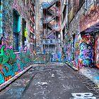 Hoiser Lane 2 HDR by Danielle  Miner