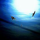 The Flight by miroslava
