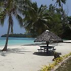 Beautiful Beach in Vanuatu by Sandy1949